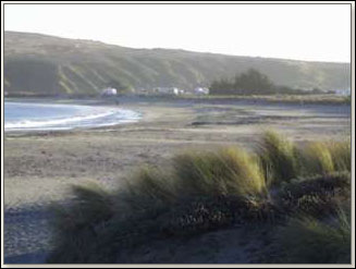 Bodega  Fishing Report on Doran Beach Bodega Bay Historical Status Open For Swimming